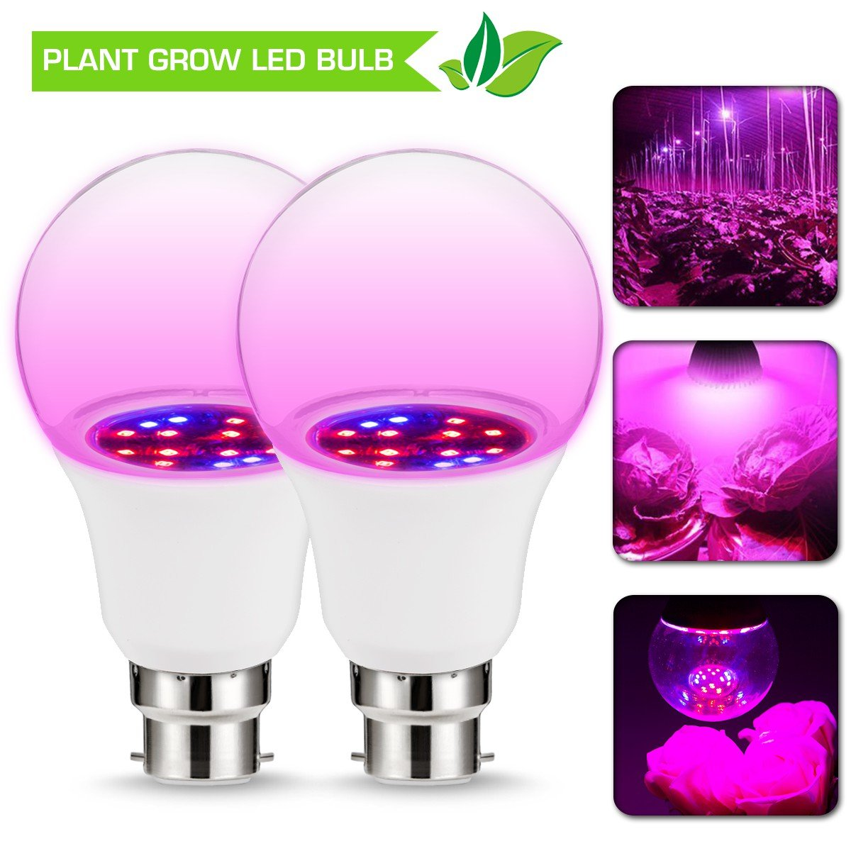 JandCase Grow LED Light, 6W B22 A60 Grow Light Bulb, Non-Dimmable, 270° Beam Angle, Red/Blue Lighting Hydroponic Lights for Garden Greenhouse Indoor Growth Bonsai Vegetable Plants Flowers, 2 Pack [Energy Class A+]