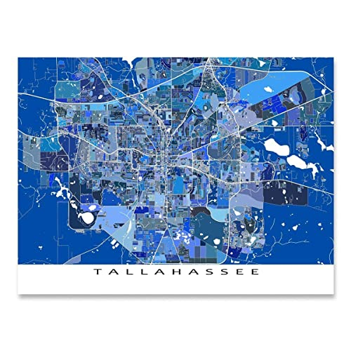 Print Map Of Florida.Amazon Com Tallahassee Map Print Florida Usa City Street Poster