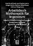 Arbeitsbuch Mathematik für Ingenieure, Band II: Differentialgleichungen, Funktionentheorie, Numerik und Statistik: 2