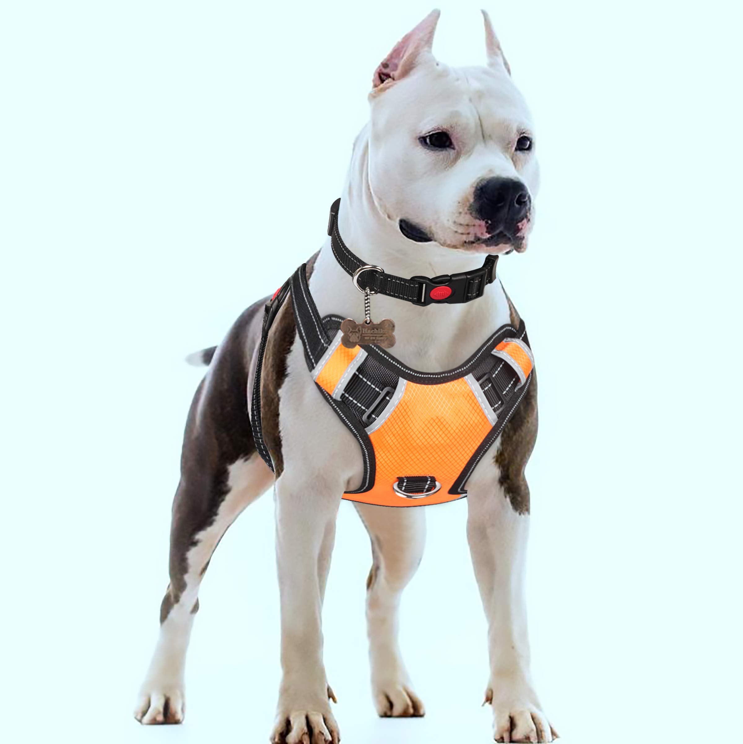 Babyltrl XL Dog Harness for Large Dogs No-Pull Adjustable Pet Reflective Oxford Soft Vest for Big Dogs Easy Control Harness (Dog Collar Included)