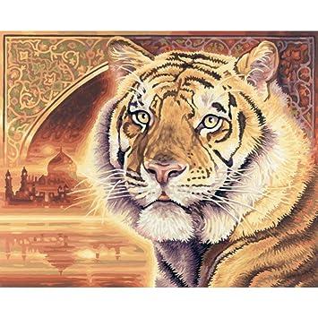 Schipper Indian Bengal Tiger Malen Nach Zahlen 40 X 50 Cm Amazonde
