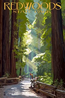 product image for Redwoods Park, California - Pathway in Trees 36960 (24x36 Signed Print Master Art Print - Wall Decor Poster)