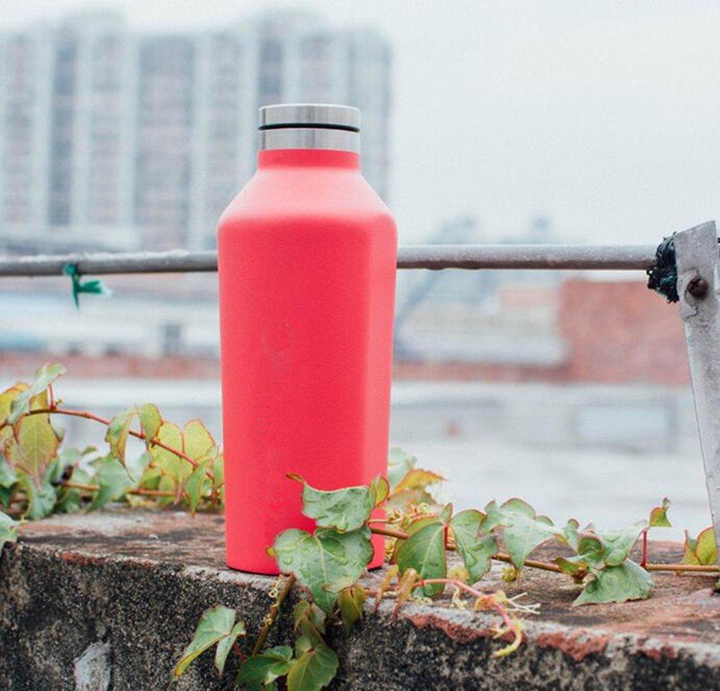 SHULING Wassernapf, Wasser Cup Edelstahl Vakuum Kühler Cup Therma Wassernapf, SHULING Rot, 260 Ml e8c21f