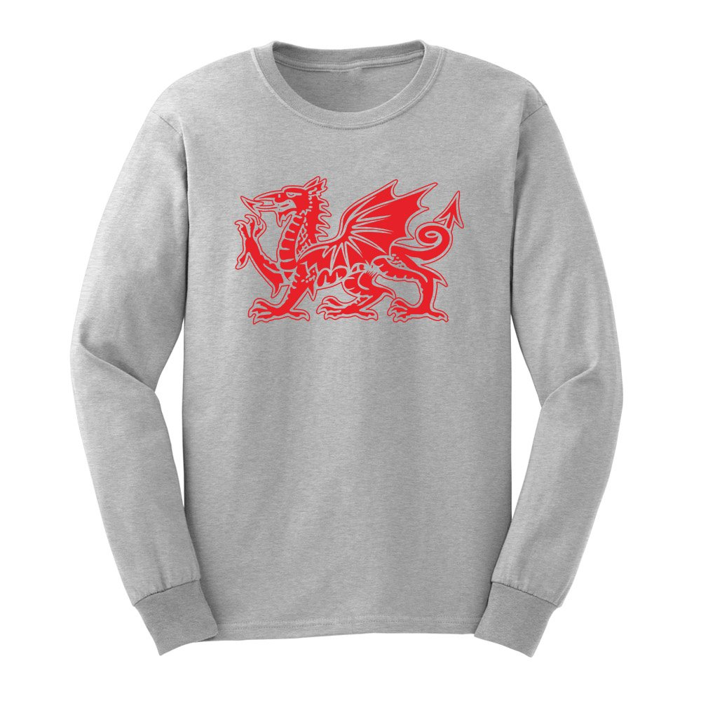 Loo Show S The Welsh Dragon Graphic Adult T Shirts Casual Tee