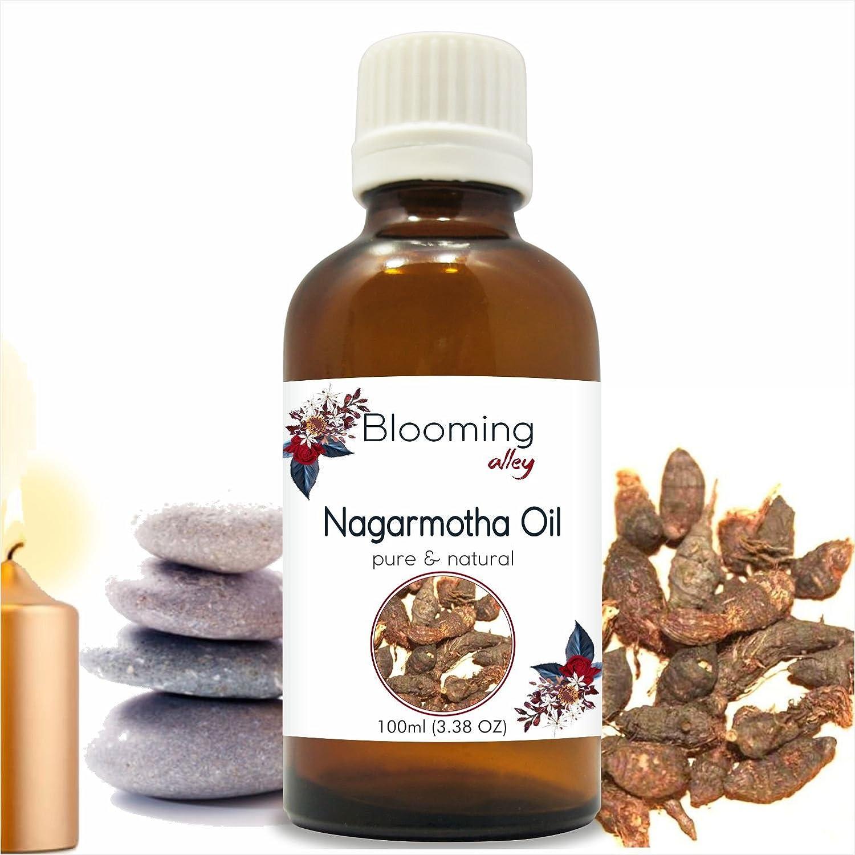 最終値下げ Nagarmotha Oil(Cyprus Blooming 100 Scariosus) Essential Oil Oz 100 ml or 3.38 Fl Oz by Blooming Alley 100ML B07F148Q3V, コスギマチ:95ca31d1 --- a0267596.xsph.ru