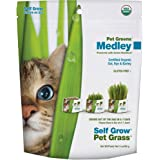 Pet Greens Garden Self Grow Kit