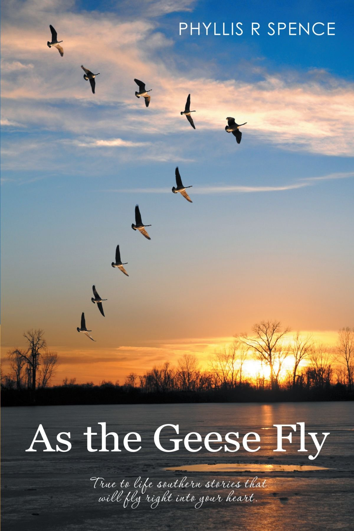 As the Geese Fly PDF