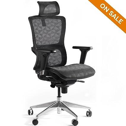 CCTRO High Back Mesh Ergonomic Office Chair With Adjustable Headrest  Armrest, 360 Degree Swivel Executive