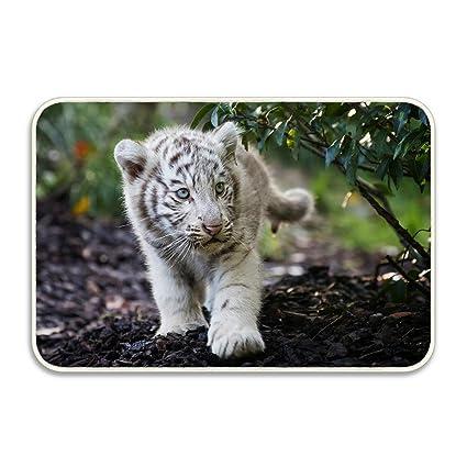 amazon com uston stylish animal white tiger cub cute blue eyes