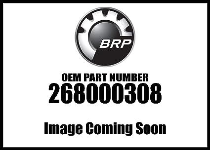 Amazon com: Sea-Doo 2018 Rxt 230 Ibr Nut 268000308 New Oem