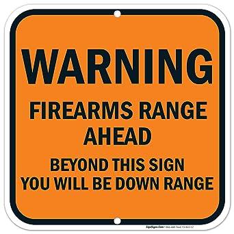 Amazon.com: Armas de fuego gama por delante más allá de este ...