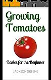 Growing Tomatoes: Basics for the Beginner