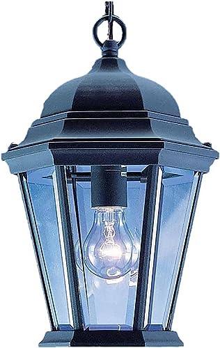 Volume Lighting V8222-5 1-Light Outdoor Pendant, Black