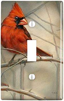 Amazon Com Graphics More Cardinal Red Bird On Tree Branch Plastic Wall Decor Toggle Light Switch Plate Cover Furniture Decor