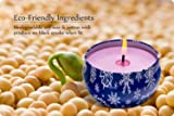 HITHYS 8.1oz Lavender Scented Candle, Natural Soy