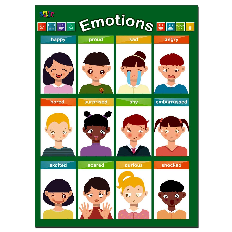 Amazon.com : 15 Laminated Educational Posters, Alphabet, Shapes ...
