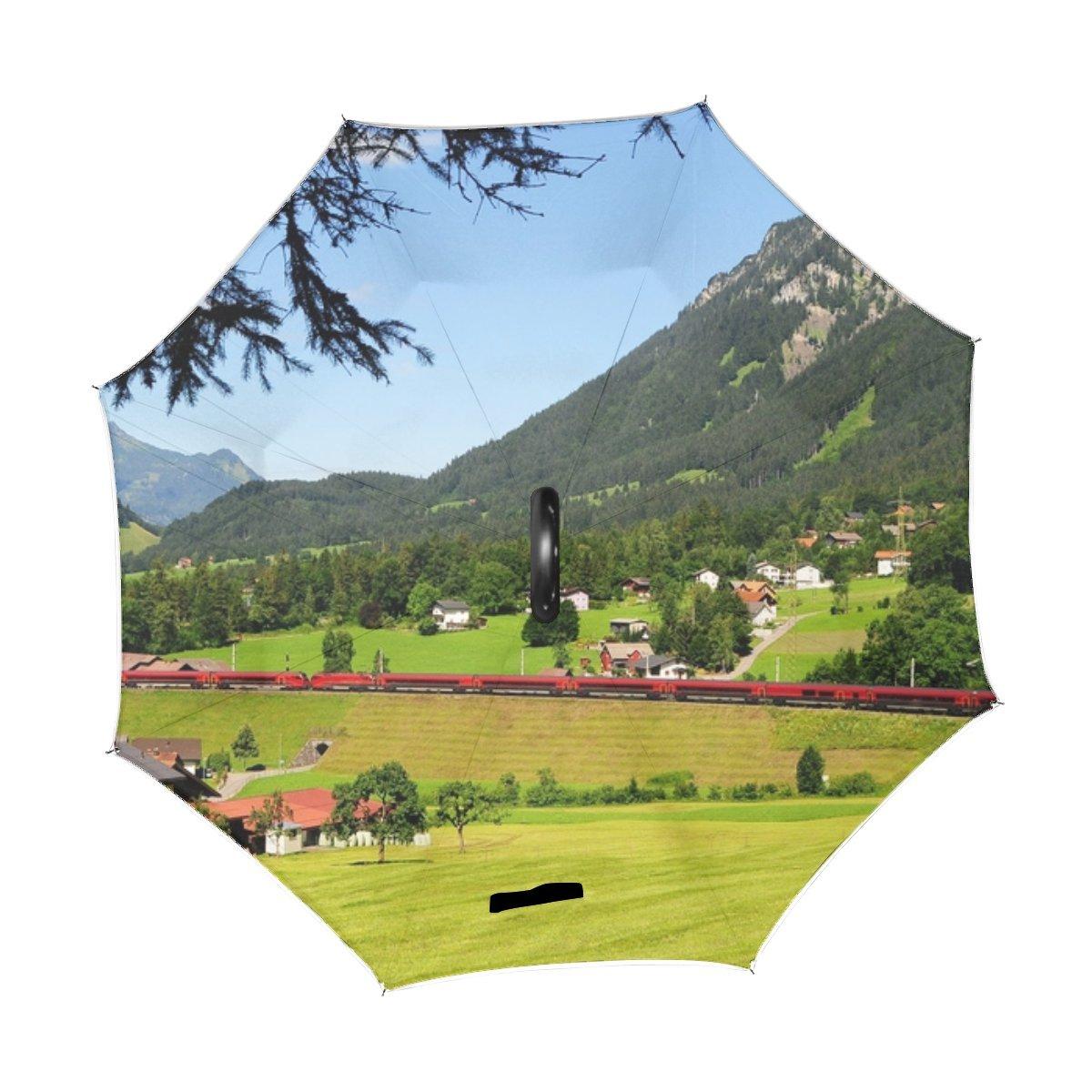 6779970b30a5 Amazon.com : RH Studio Inverted Umbrella Austria Mountains Grass ...