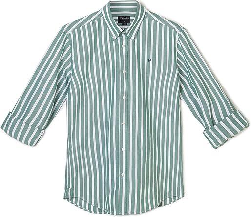 SILBON - Camisa Sport Raya Ancha Green para Hombre: Amazon.es ...