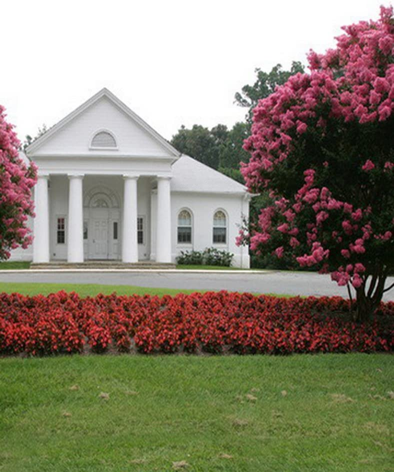 Red Flowers Tree White House Photography Backdrops Photo Props Studio Background 5x7ft