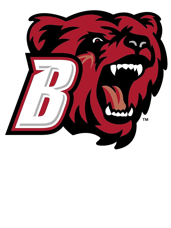 PPBRI015 Mens//Womens Premium Triblend T-Shirt Official NCAA Bridgewater State University Bears