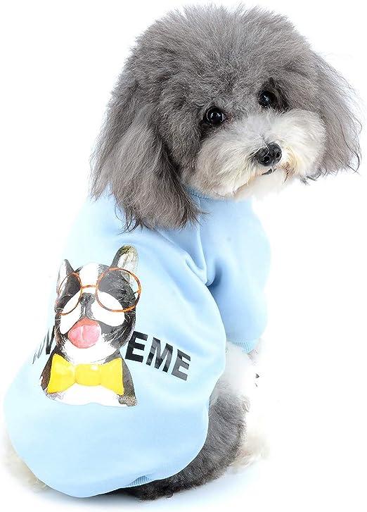 Zunea Sudadera para Perros Pequeños Ropa de Invierno Cálido Abrigo Jersey Suéter de Algodón Acolchado para Cachorros Mascotas Chihuahua Yorkshire Gatos para Clima Frío Azul L: Amazon.es: Productos para mascotas