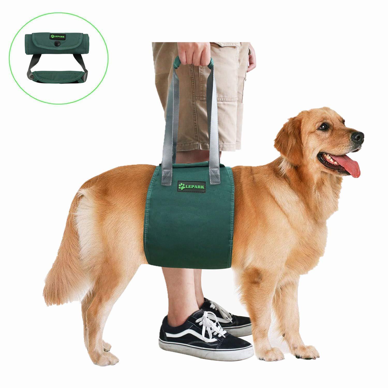 Arnes apoyo por movilidad estabilidad  mascotas-Extra Grande
