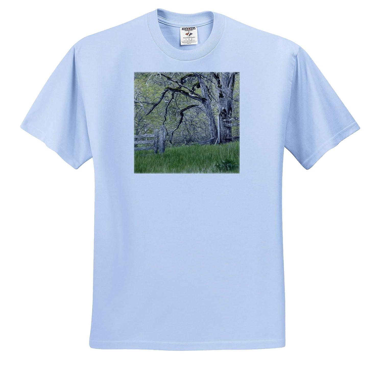 Scenics 3dRose Danita Delimont - Adult T-Shirt XL USA Abandoned Pasture ts/_315105 Washington State