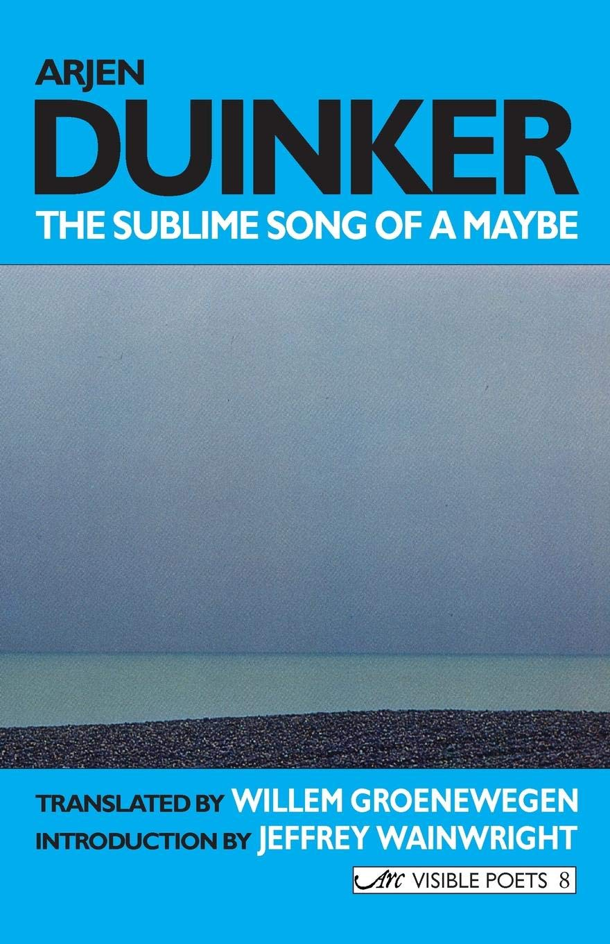 The Sublime Song of a Maybe (Visible Poets) PDF