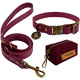 Wisedog Dog Collar and Leash Set Combo:Adjustable Durable Training Pet Collars with Dog Leashes for Small Medium Large Dogs,I