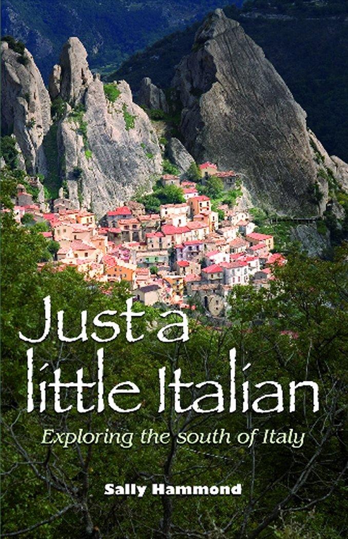 Download Just a Little Italian pdf epub