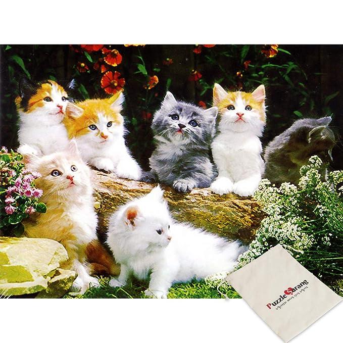 White Puzzle de 150 Piezas, diseño de Gatos, Color Blanco ...