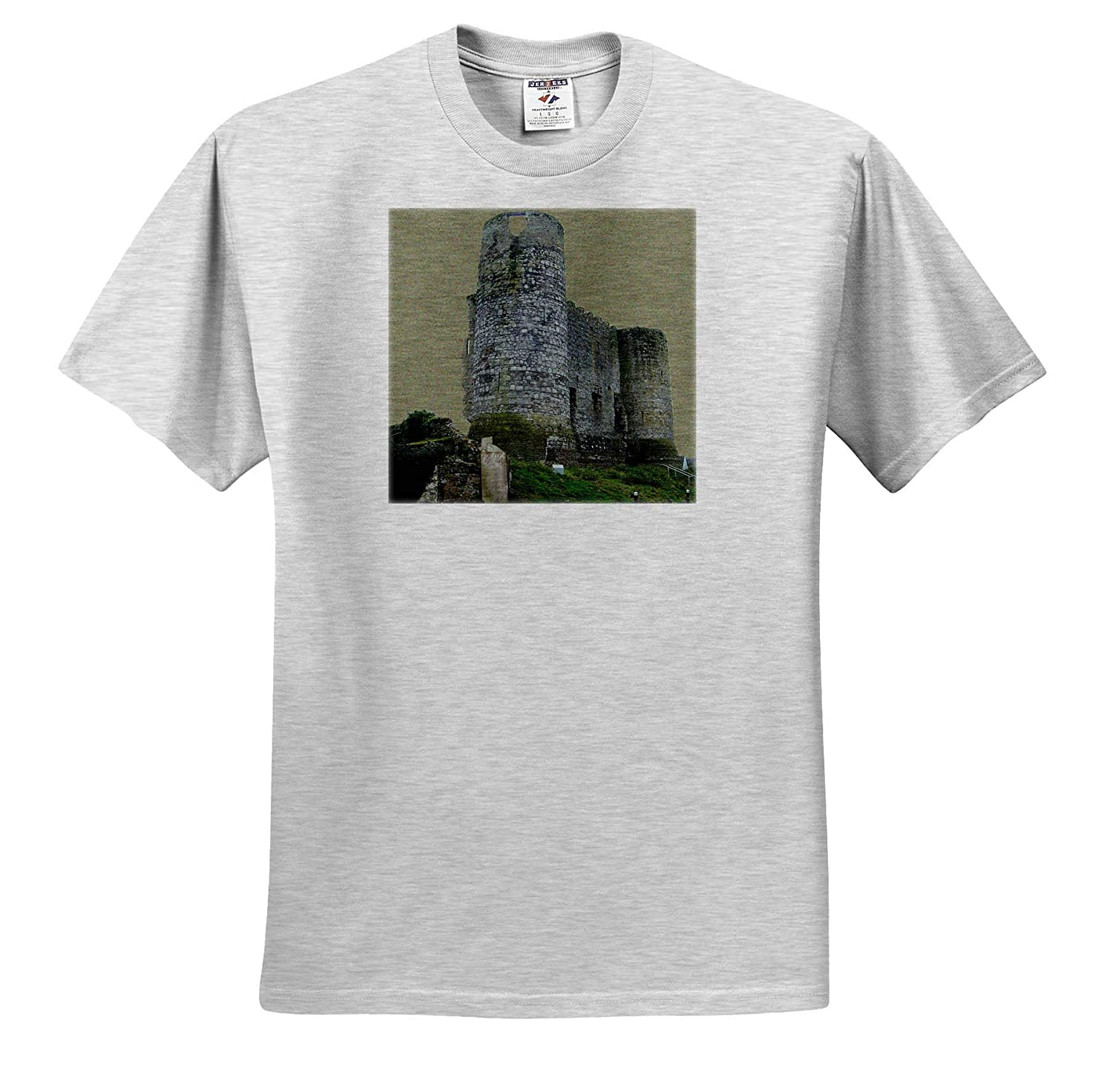 T-Shirts 3dRose Jos Fauxtographee Carlow Castle with Backdrop A sage Colored Background to The Carlow Castle in Ireland