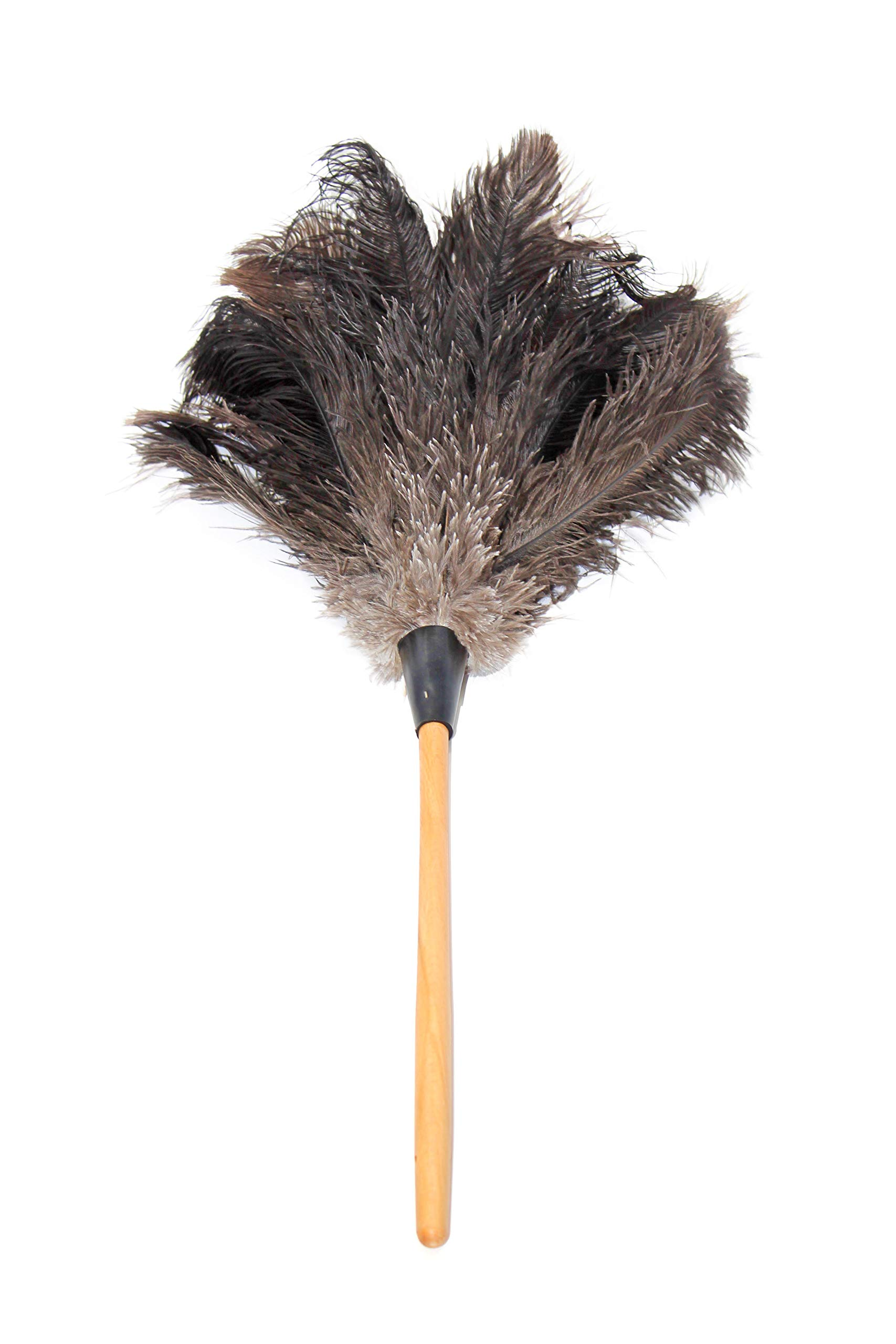 GM Royal Ostrich Feather Duster (Large GM03 (28''), Black) by Royal Feather