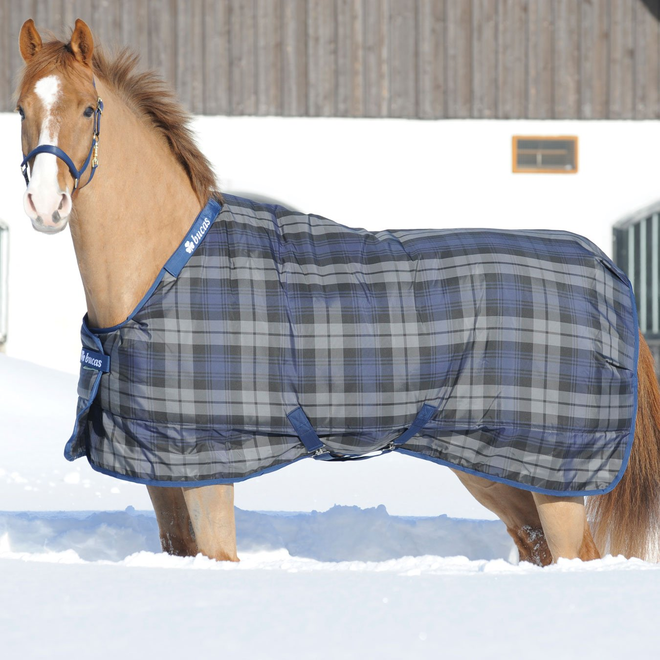 7'0 Bucas Celtic Heavyweight (300g) Check Stable Rug