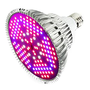 Outcrop Innovation LED Grow Light Bulb