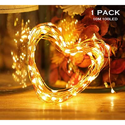 Fairy String Lights 33ft 100 LED Twinkle String Lights Battery Operated with Remote Control and Timer, Firefly lights for indoor/outdoor Christmas decorations/party terrace wedding gardens.Warm white. : Garden & Outdoor
