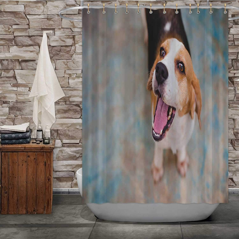 Amazon.com: Tstyrea B - Agape Dog,Bathroom Decor Set Surprise for