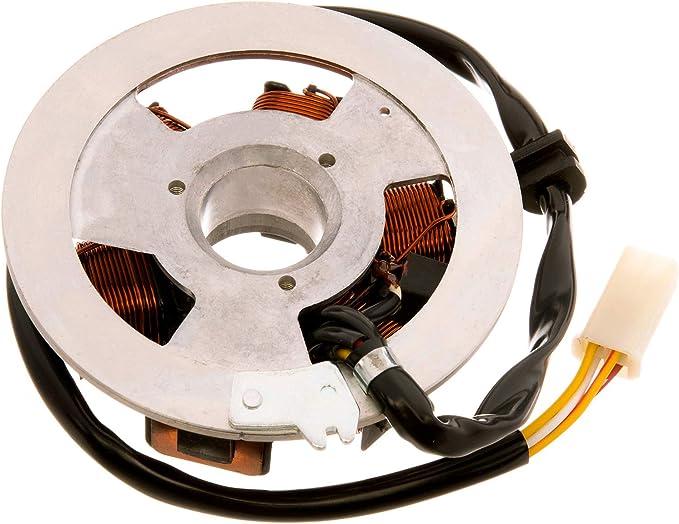 Fez Grundplatte Stator Für Pvl 6 Polig Für Simson S51 S70 S53 S83 Sr50 Sr80 Auto