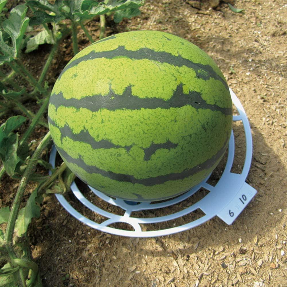 JYCRA Soporte de plástico para Plantas de melón, Soporte de ...