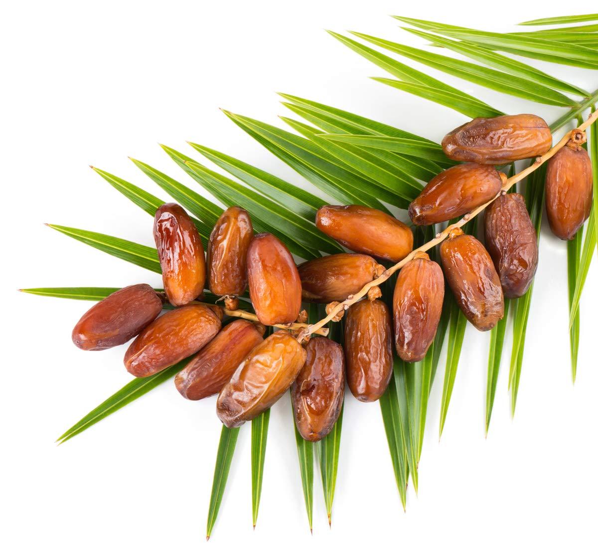 Dates Medjool Organic, 0.5lb