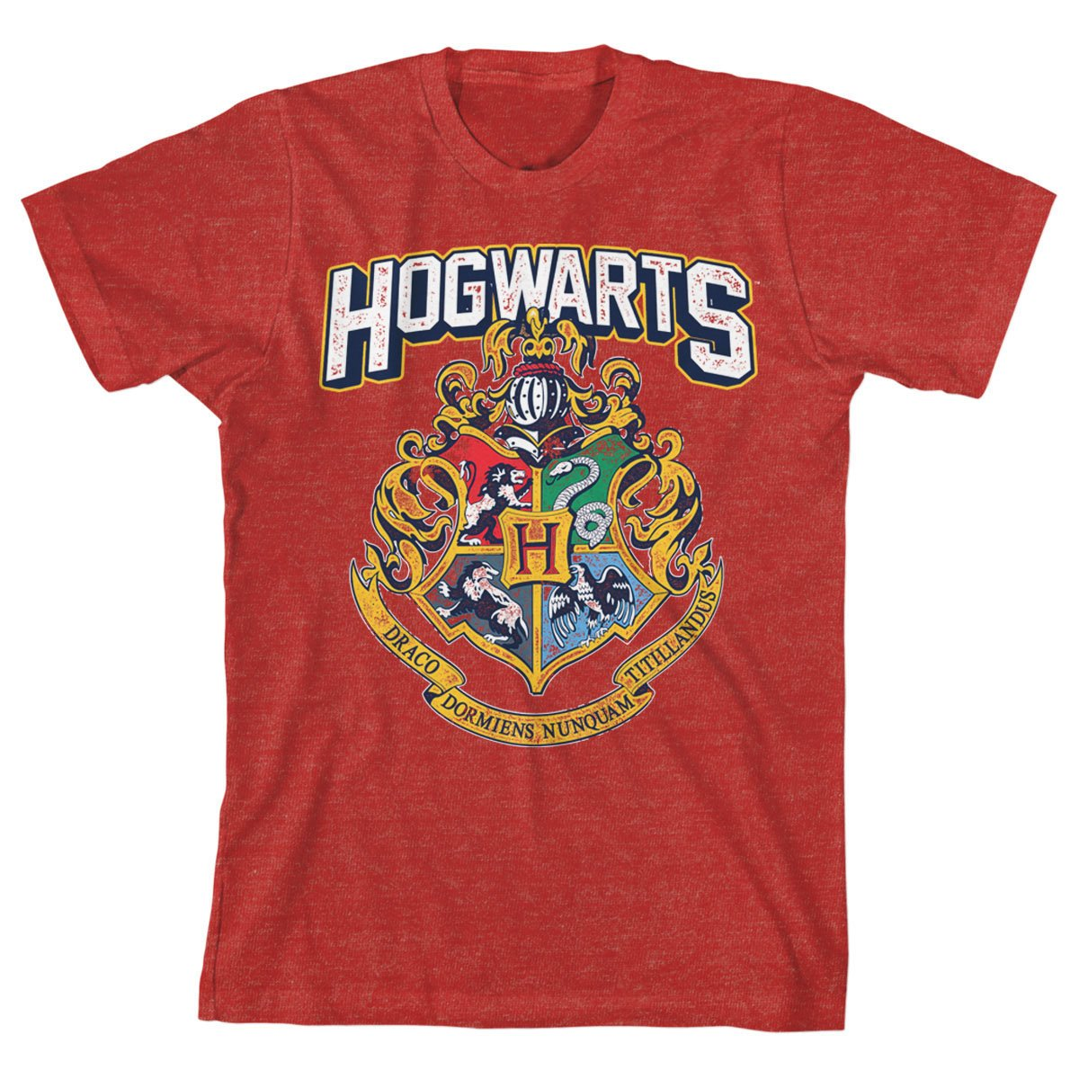 59bd6936 Amazon.com: HARRY POTTER Hogwarts Distressed Boys Youth T-Shirt Licensed:  Clothing