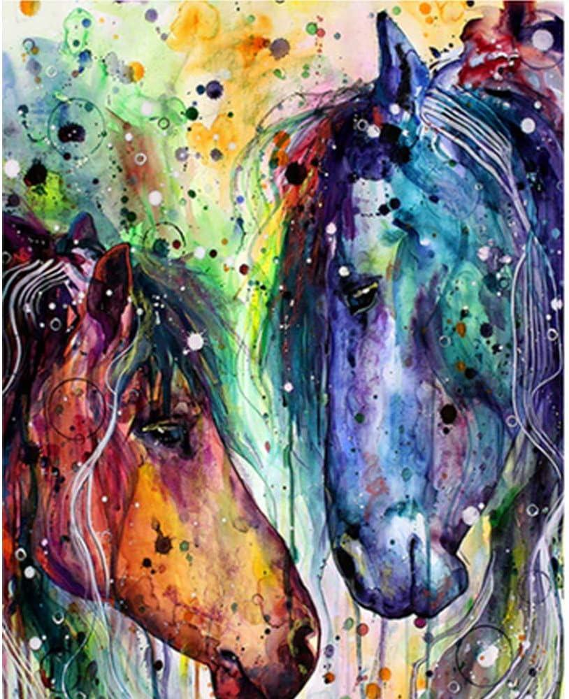 LvJin DIY Pintura Digital Cabeza de Caballo de Doble Color, Lienzo de Color sin Marco, 20 * 26 in, Pintura por números, Pintura para niños