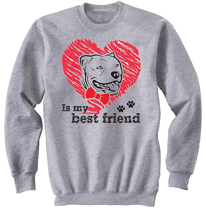 teesquare1st Pitbull IS MY Best Friend Gris Sudadera: Amazon.es: Ropa y accesorios