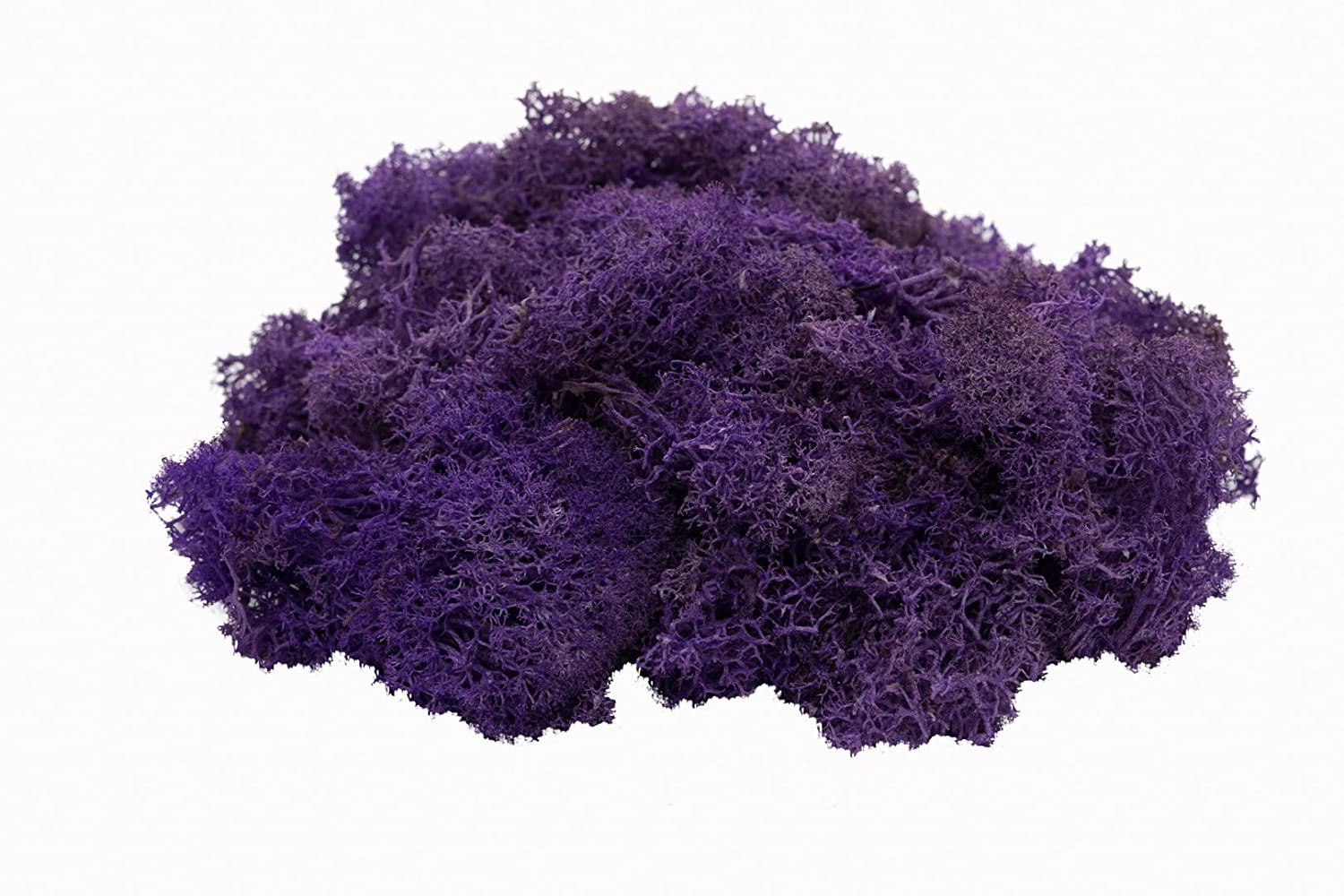 2 Ounces LavenderMoss or Any Craft or Floral Project | Terrariums Reindeer Moss Preserved | Plus Free Nautical Ebook by Joseph Rains for Fairy Gardens