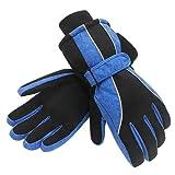 Amazon Price History for:Terra Hiker Waterproof Microfiber Winter Ski Gloves 3M Thinsulate Insulation for Women