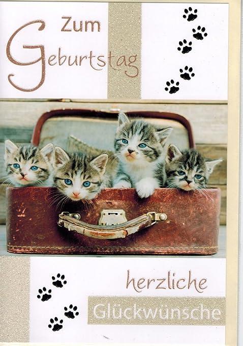 Biglietto Compleanno Gatti Set 5 Pezzi Gatto Mieze Per Biglietti Di