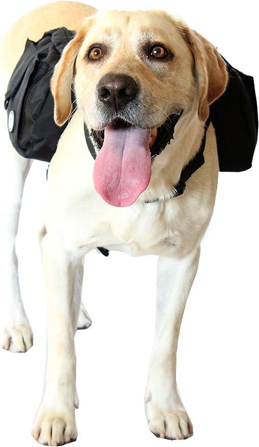 Rigg perro Oxford tela perro sillín Bolsa Arnés Mochila – perfecto ...