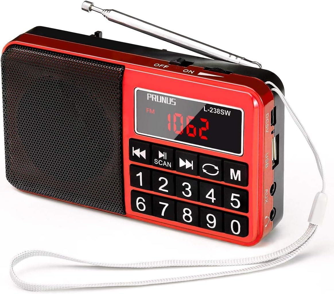 Mini Altavoz PRUNUS Radio L-238SW Reproductor MP3 SW Am(MW) FM con Puerto para Tarjeta TF Memoria USB (Ojo:No se Puede Fijar Las emisoras/No se Puede memorizar o borrar Las emisoras manualmente): Amazon.es: