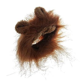 xhorizon CFL Disfraz de Mascota de Peluca de Melena de León para Perro Gato Traje con