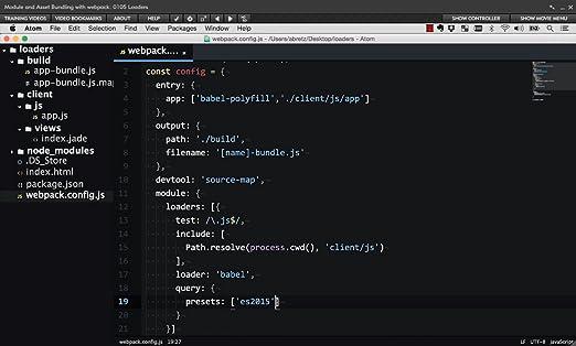 Amazon com: Module and Asset Bundling with webpack [Online Code